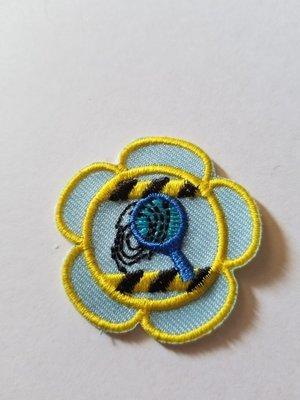 CSI Flower