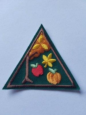 Fall Fun Triangle