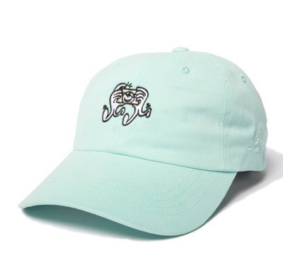 CAMERA HANDS DAD HAT