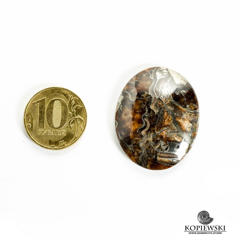 Аммонитовый симбирцит 35*25*3 мм