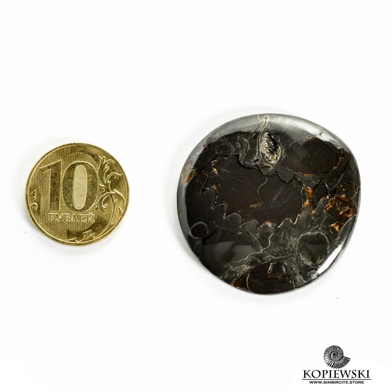 Аммонитовый симбирцит 38*38*3 мм