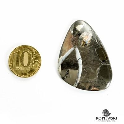 Кабошон танатоценоз 50*35*3 мм