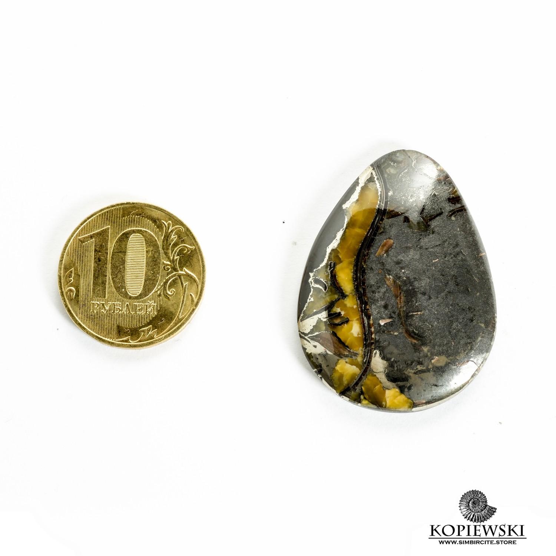 Аммонитовый симбирцит 40*30*3 мм