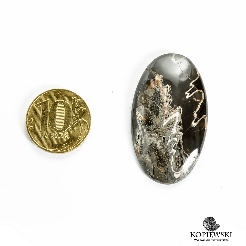 Аммонитовый симбирцит 45*25*3 мм