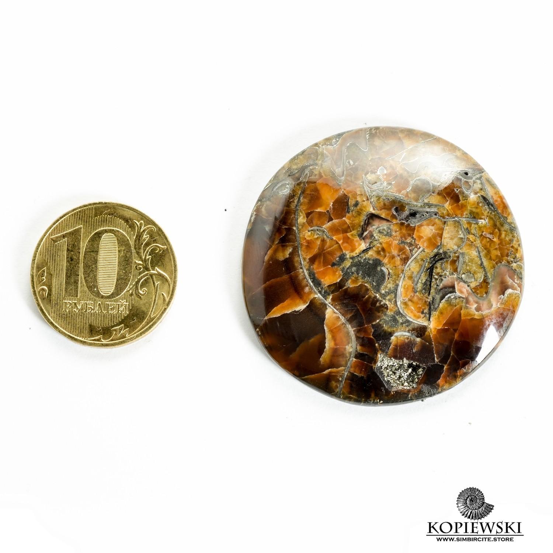 Аммонитовый симбирцит 43*43*3 мм