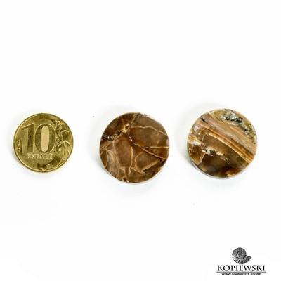 Пара Аммонитовый Симбирцит 25*25*3 мм