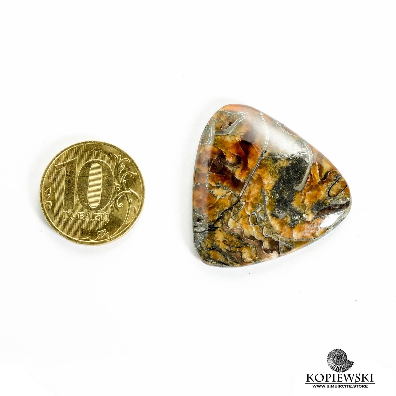 Аммонитовый симбирцит 35*35*3 мм