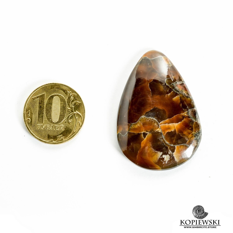 Аммонитовый симбирцит 45*30*3 мм