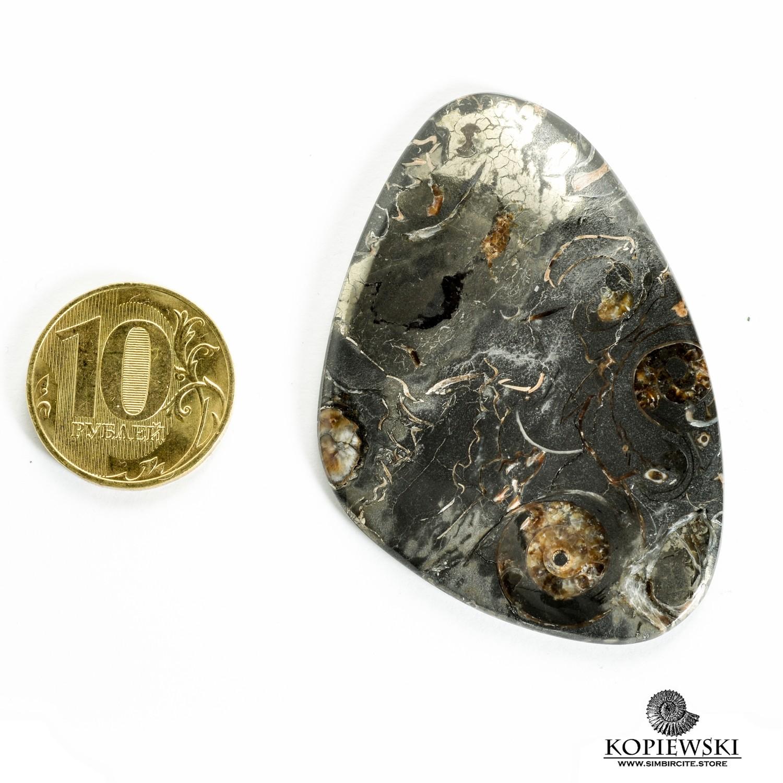 Кабошон танатоценоз 60*40*3 мм