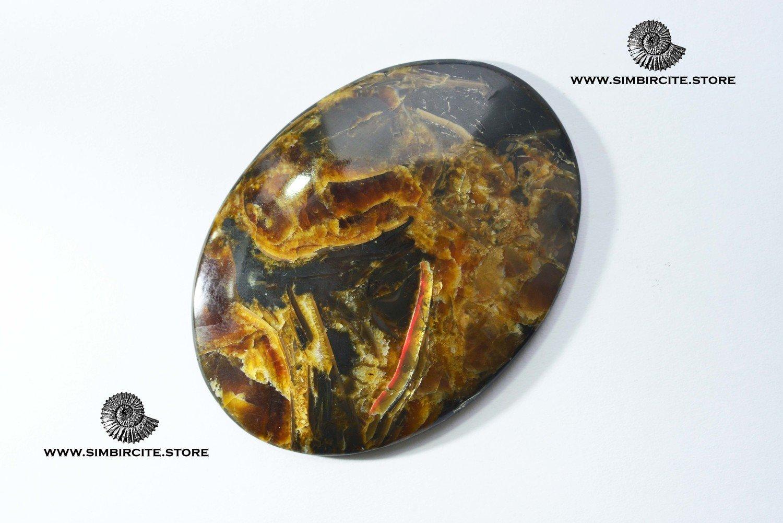 Аммонитовый симбирцит 74*55*5 мм