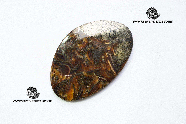 Аммонитовый симбирцит 62*40*3 мм