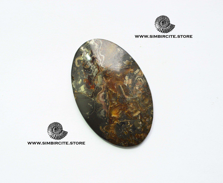 Аммонитовый симбирцит 56*36*4 мм