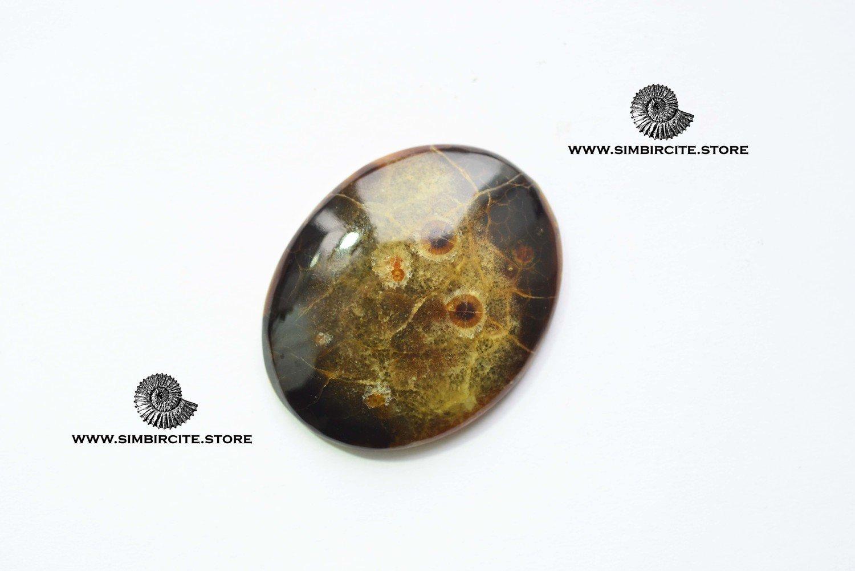 Аммонитовый симбирцит 45*35*5 мм