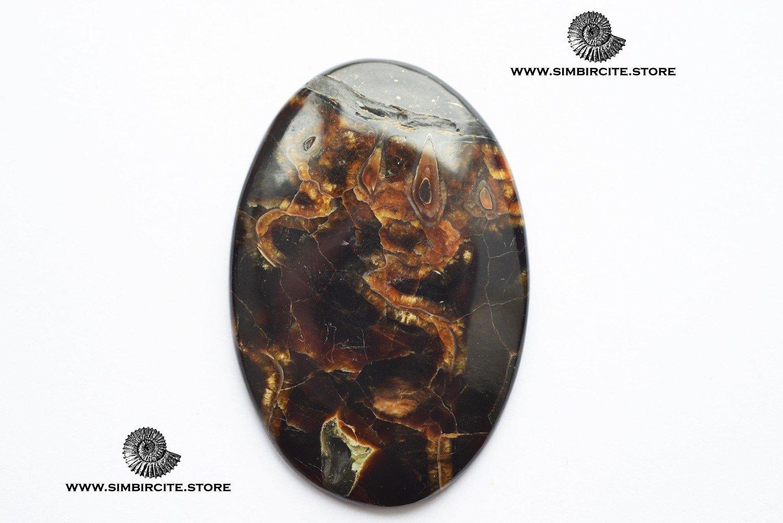 Аммонитовый симбирцит 48*32*3 мм