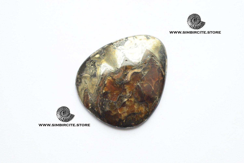 Аммонитовый симбирцит 42*35*5 мм