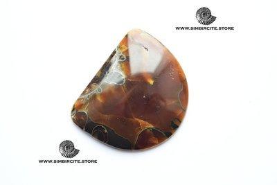Аммонитовый симбирцит 50*41*4 мм