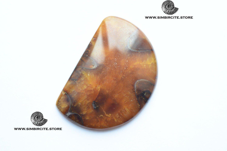 Аммонитовый симбирцит 45*31*4 мм