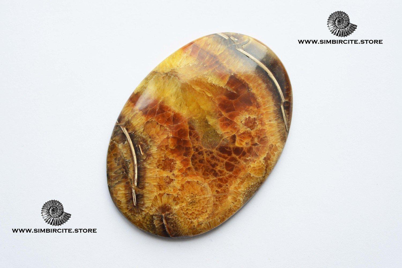 Аммонитовый симбирцит 67*48*3 мм