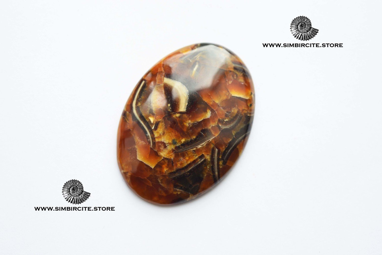 Аммонитовый симбирцит 52*38*5 мм