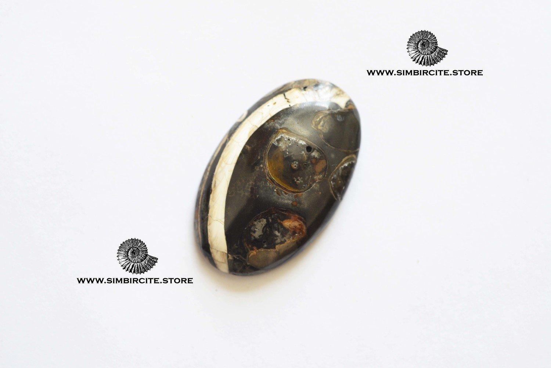 Кабошон танатоценоз 40*25*5 мм