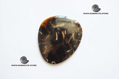 Аммонитовый симбирцит 46*29*3 мм