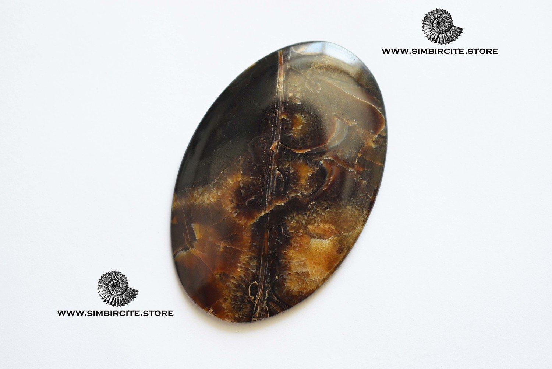 Аммонитовый симбирцит 50*35*5 мм