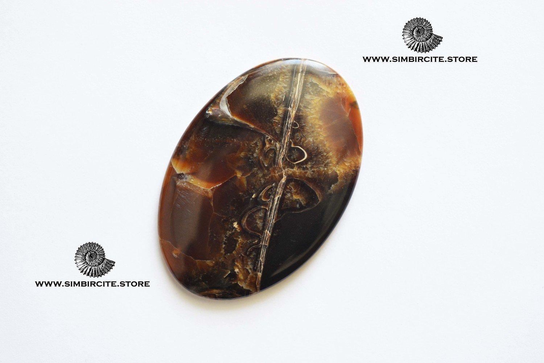 Аммонитовый симбирцит 55*37*3 мм