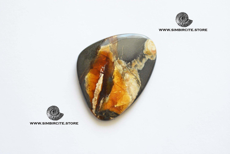 Аммонитовый симбирцит 60*38*3 мм
