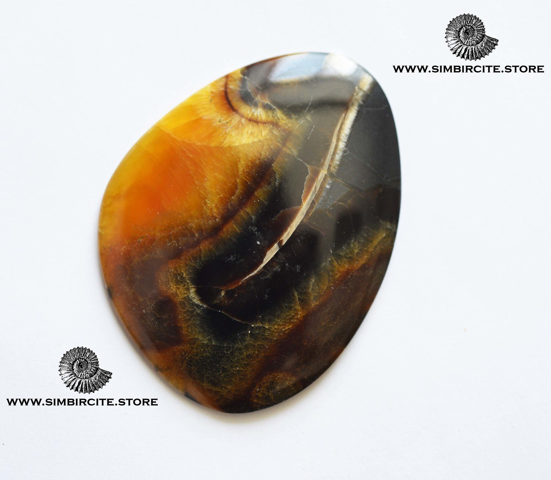 Аммонитовый симбирцит 68*50*4 мм