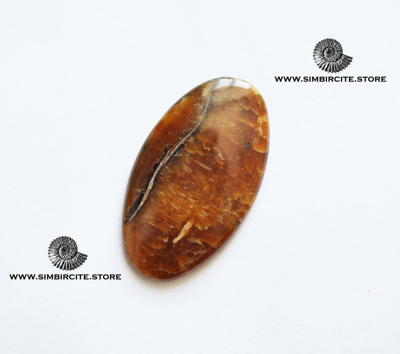 Аммонитовый симбирцит 53*30*4 мм