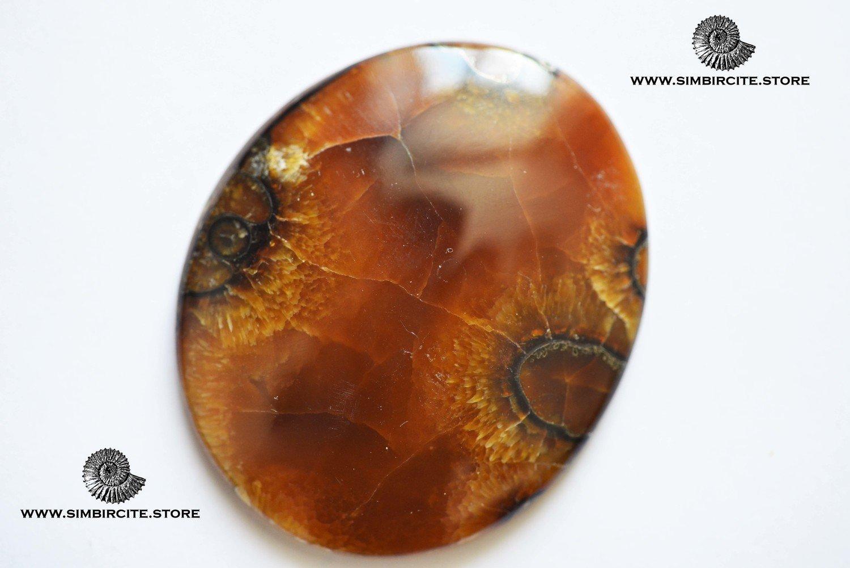 Аммонитовый симбирцит 60*50*7 мм