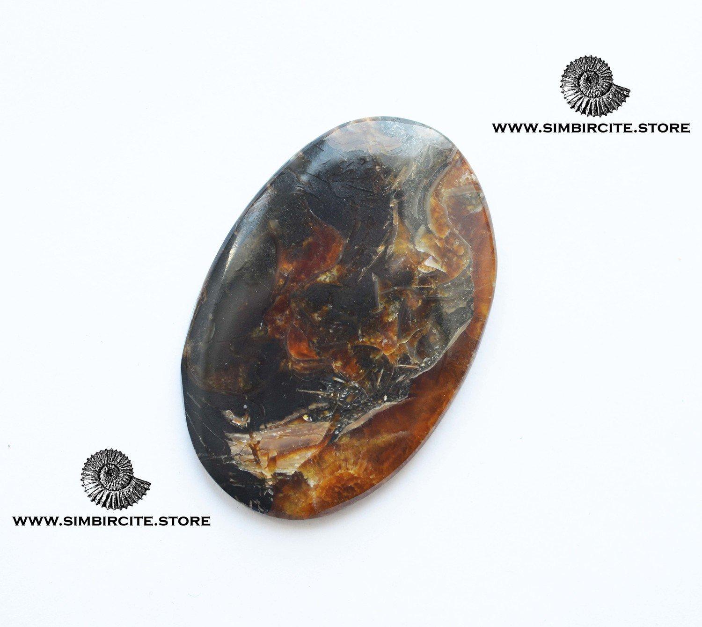 Аммонитовый симбирцит 53*34*3 мм
