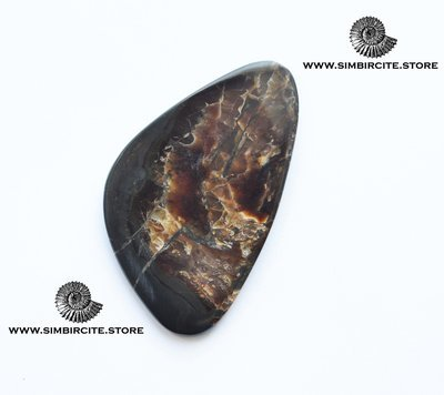 Аммонитовый симбирцит 55*33*3 мм
