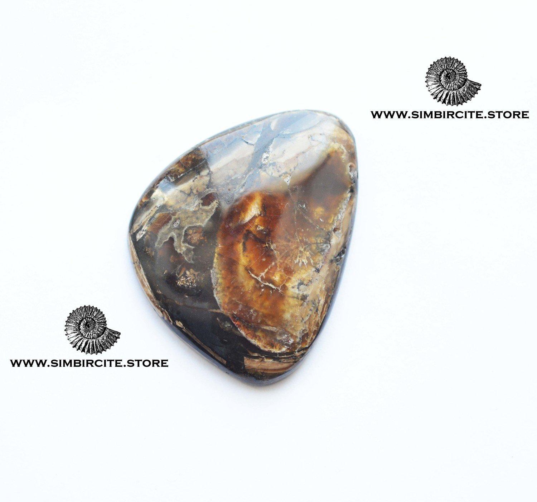 Аммонитовый симбирцит 45*35*4 мм