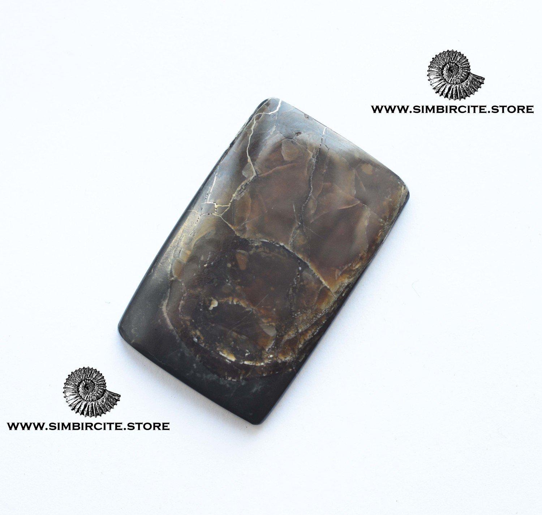 Аммонитовый симбирцит 36*23*3 мм