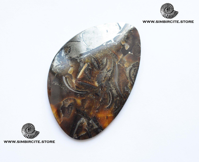 Аммонитовый симбирцит 70*45*4 мм