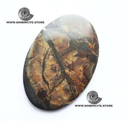 Аммонитовый симбирцит 70*49*5 мм