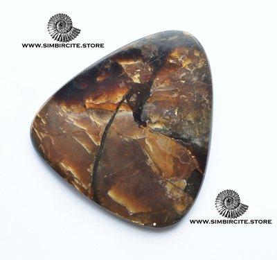Аммонитовый симбирцит 60*56*4 мм