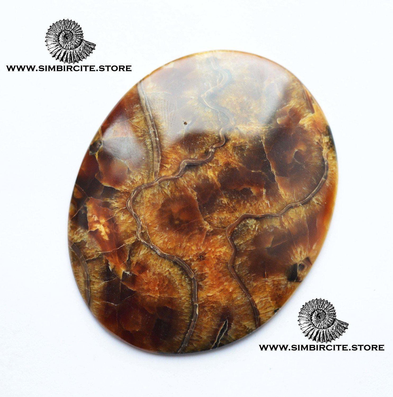 Аммонитовый симбирцит 68*55*4 мм