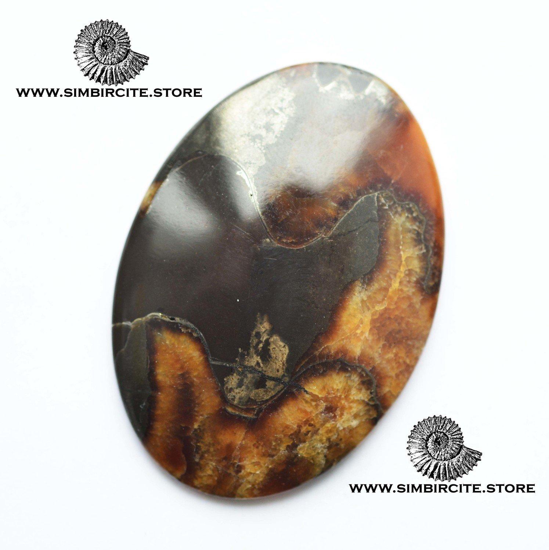 Аммонитовый симбирцит 53*38*4 мм