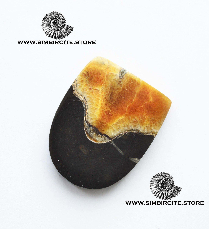 Аммонитовый симбирцит 34*26*4 мм