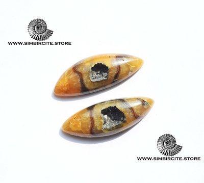 Пара  Аммонитовый Симбирцит 33*12*4 мм