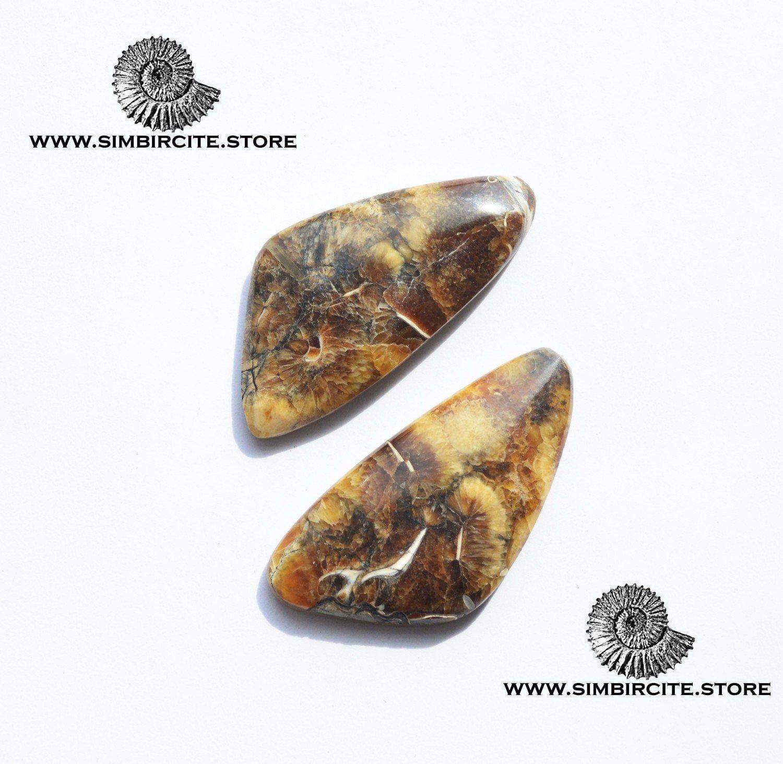Пара  Аммонитовый Симбирцит 35*18*3 мм