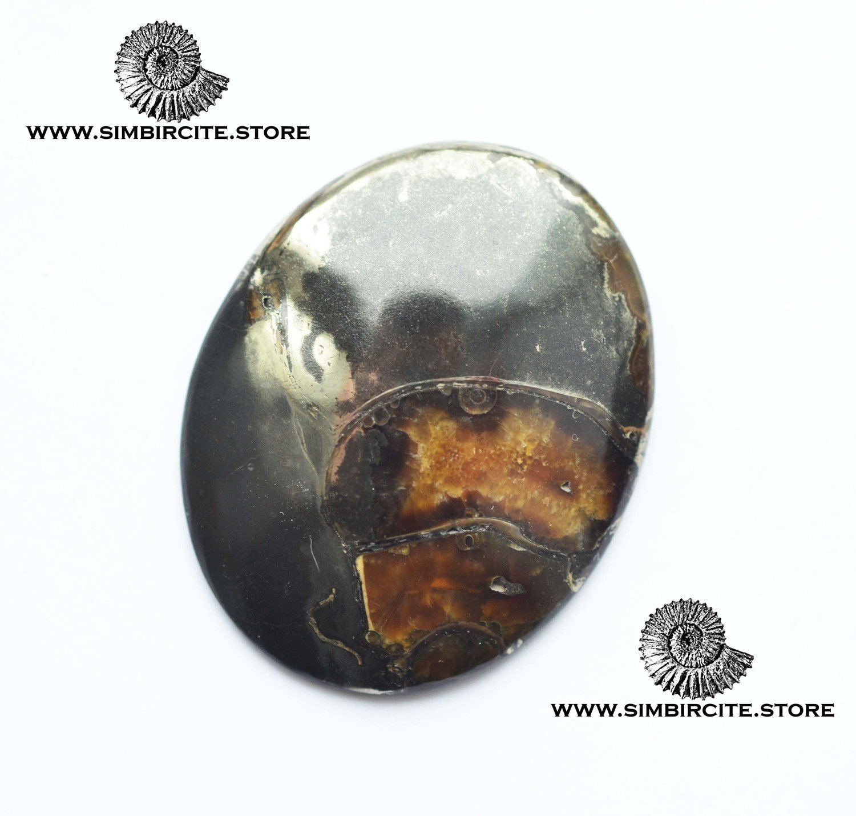 Аммонитовый симбирцит 50*40*6 мм