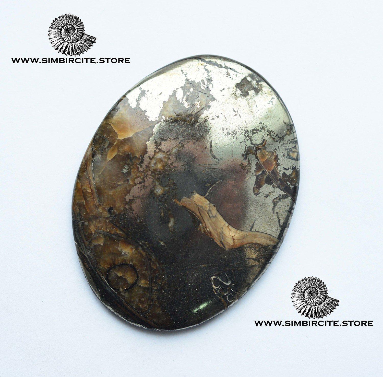 Аммонитовый симбирцит 57*43*4 мм