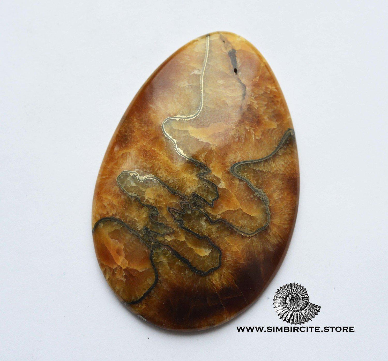 Аммонитовый симбирцит 65*44*8 мм