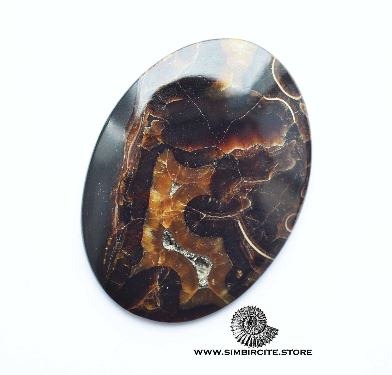 Аммонитовый симбирцит 60*43*3 мм