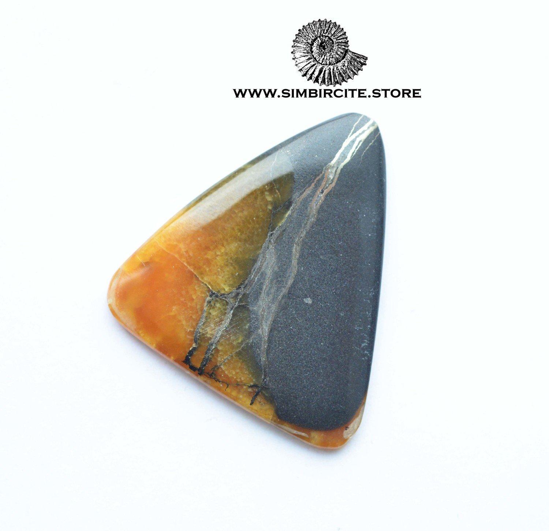 Аммонитовый симбирцит 37*34*3 мм