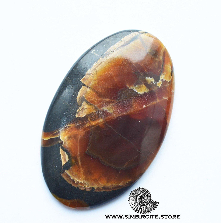 Аммонитовый симбирцит 65*42*4 мм