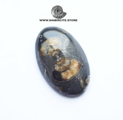 Кабошон танатоценоз 32*21*6 мм
